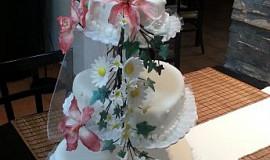 Svatební dorty - Maja Motti