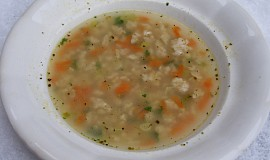 Nepravá mozečková polévka