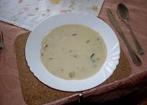 Polévka Durčina