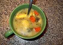 Polévka z petrželové natě