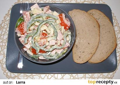 Letní rajčatový salát