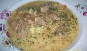 Zeleninová polievka so sójovými kockami
