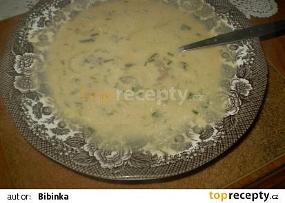 Houbovo-smetanová polévka se sýrem a  koprem