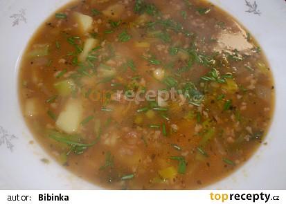 mletá polévka