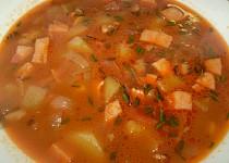 Polévka skoro-gulášovka