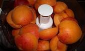 Meruňková marmeláda z DP