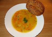 Mrkvová zdravotní polévka