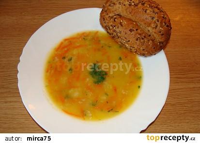 Mrkvová zdravotní polévka s vločkami