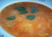Rajčatová polévka se zelím