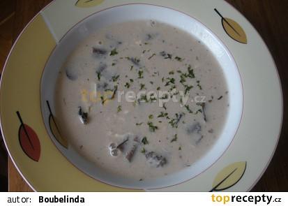 Mléčná houbová polévka