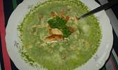 Moje špenátová polévka