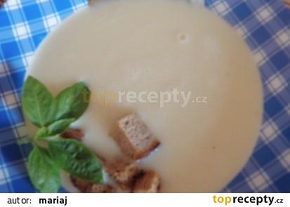 Patizónová polévka