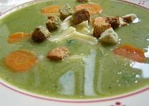 Zeleninová krémová polévka
