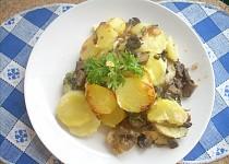Houbovník bramborový