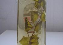 Octíčky koprový a meduňkový
