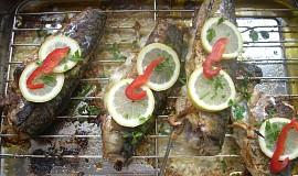 Formanská makrela