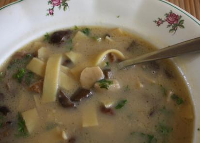 Houbová polévka s nudlemi