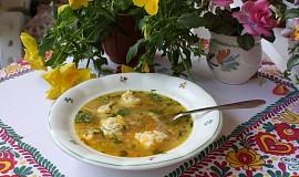 Silná slepičí polévka s Magdalenčinými nočky