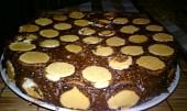 Čokoládový nepečený dort