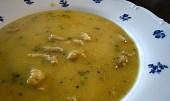 Krémová polévka z kuřecího masa