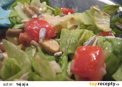 Salát s mozzarellou