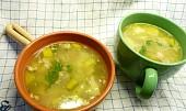 Polévkou proti nachlazení a chřipce z drůbežího masa