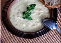 Ředkvičková krémová polévka