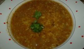 Skoro Indická polévka
