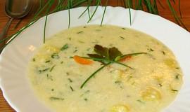 Šťovíková  nebo šnytlíková polévka s mlékem