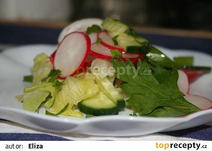 Jednoduchý salát  s ředkvičkami a okurkou
