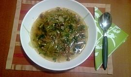 Dietní pórková polévka s houbami