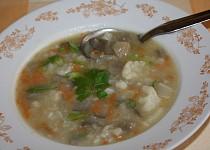 Květáková polévka s hlívou