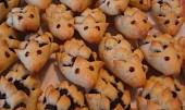 Makoví ježci