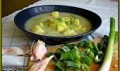 Pórková polévka s česnekem