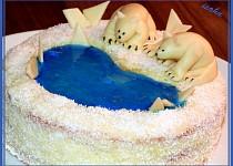 Dort Lední medvědi