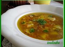 Masozeleninová polévka