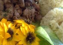 Krůtí  kari nudličky na žampionech s rýží