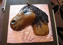 Hlava koníka