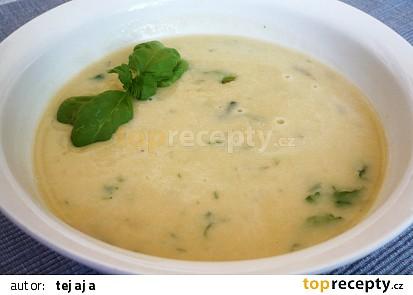 Hustá cizrnová polévka