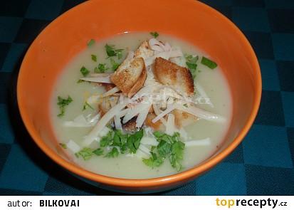 Polévka s řapíkatým celerem II.