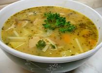 Selská polévka s nudlemi