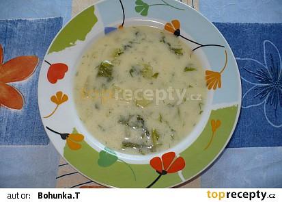 Salátová polévka s koprem