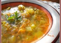Zeleninová polévka bez zasmažení