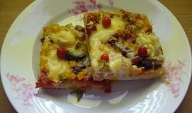 Těsto na pizzu z DP