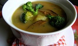 Bramborovo-brokolicová polévka s houbami