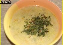 Jáhlovo-sýrová polévka