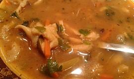 Polévka z  hlívy ústřičné, drštek a  zeleniny