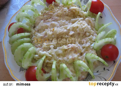 Tuňákový salát s jablkem