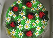 Kopretinový dort s beruškami a pavoukem