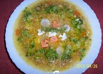 Polévka z mletého masa - oblíbená ze školní jídelny